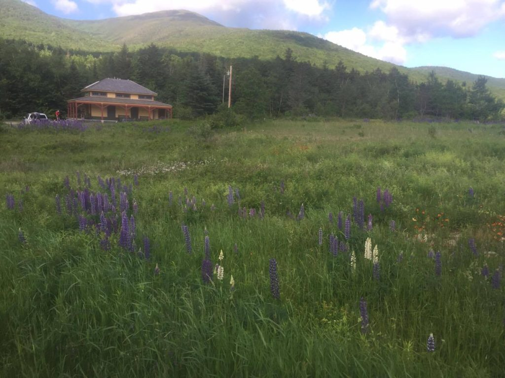 the amc club at the Presidential Traverse