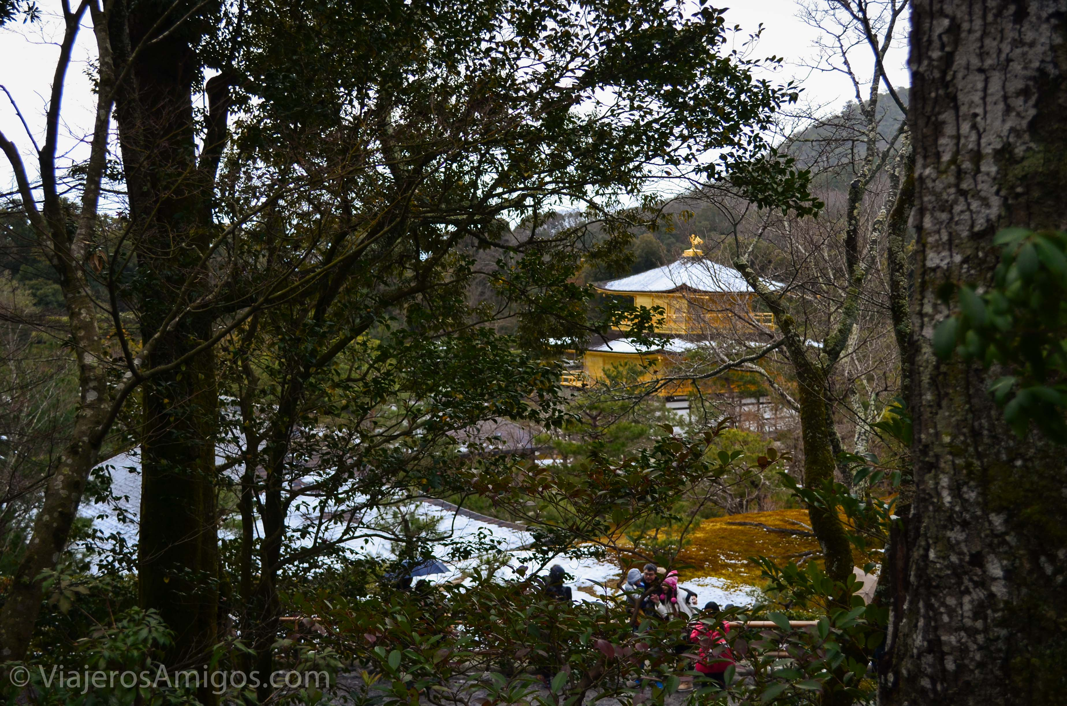 kinkakuji temple from the trees